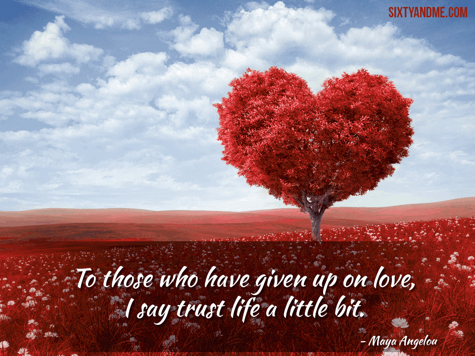 To those who have given up on love, I say trust life a little bit. – Maya Angelou