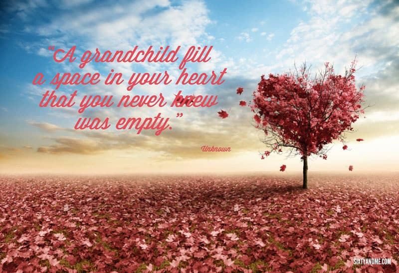 A grandchild fill a space in your heart that you never knew was empty. - Unknown