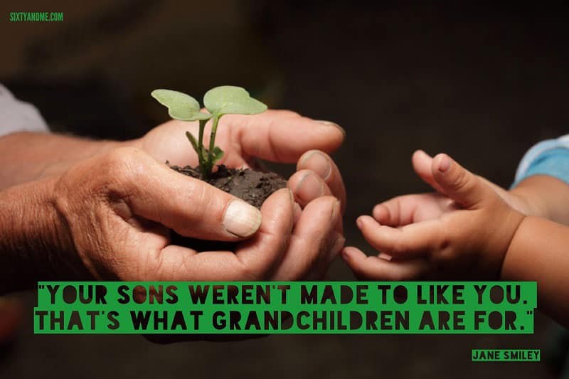 Your sons weren't made to like you. That's what grandchildren are for. - Jane Smiley