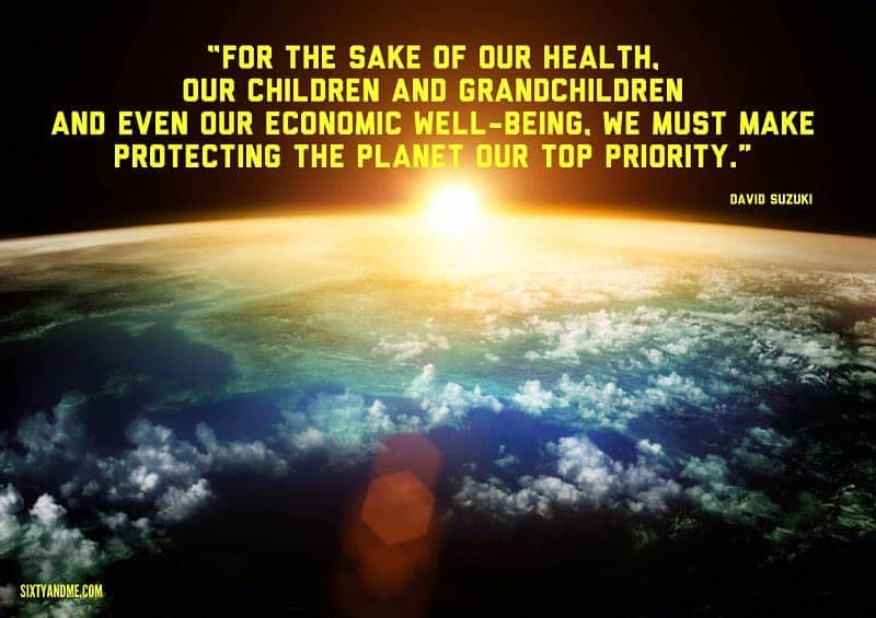 For the sake of our health, our children and grandchildren and even our economic well-being, we must make protecting the planet our top priority. - David Suzuki