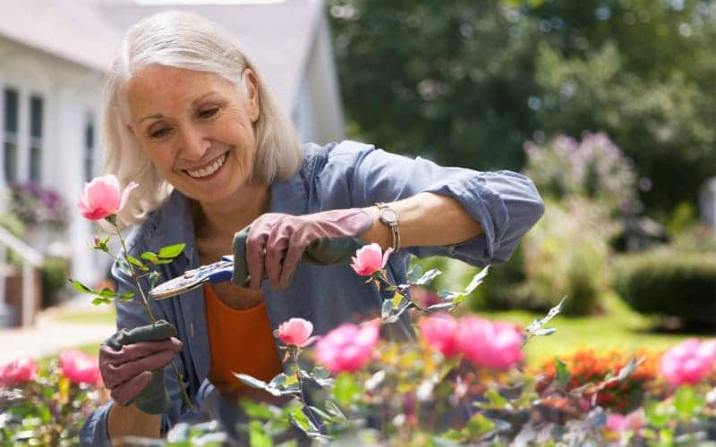 Jobs for Retirees - Gardener