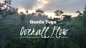 Yoga for Older Adults - Overall Flow
