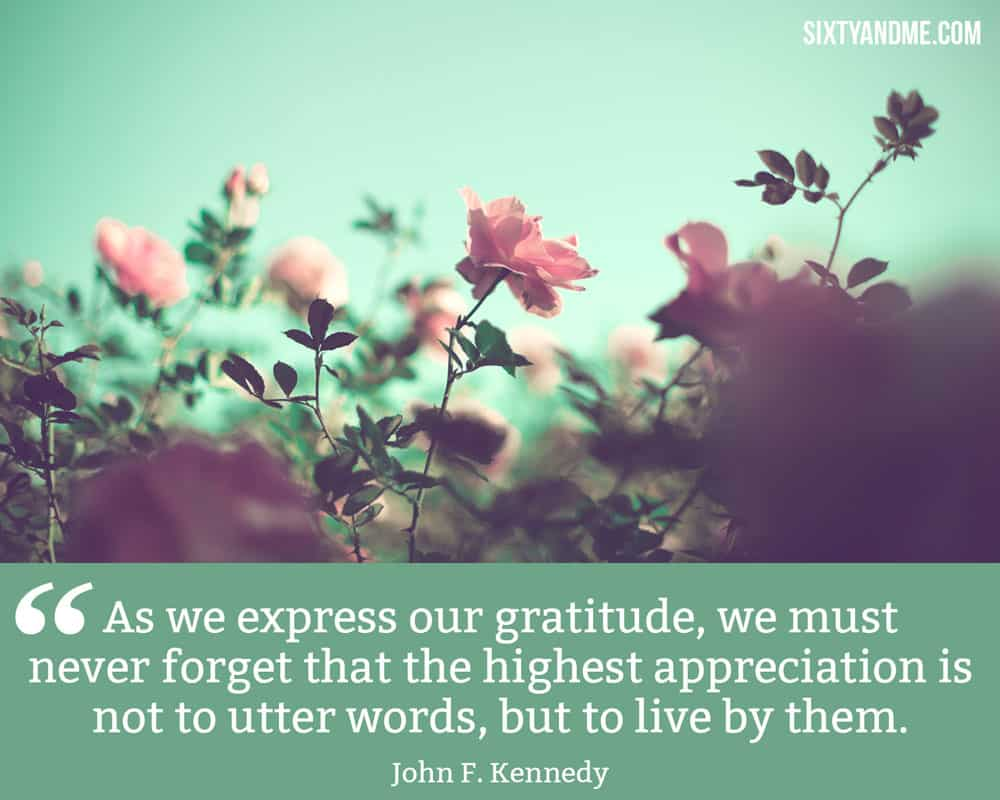 """""""As we express our gratitude, we must never forget that the highest appreciation is not to utter words, but to live by them."""" - John F. Kennedy"""