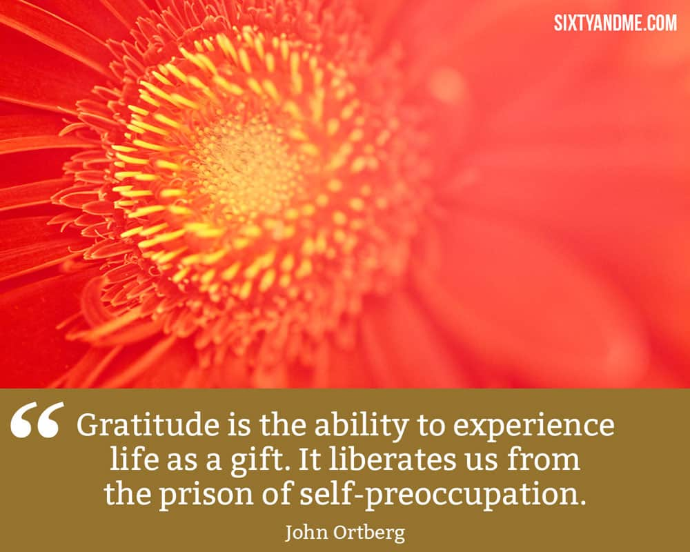 """""""Gratitude is the ability to experience life as a gift. It liberates us from the prison of self-preoccupation."""" - John Ortberg"""