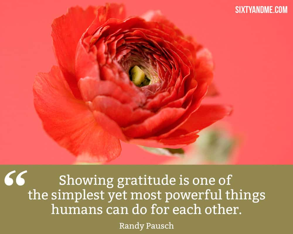 """""""Showing gratitude is one of the simplest yet most powerful things humans can do for each other."""" - Randy Pausch"""