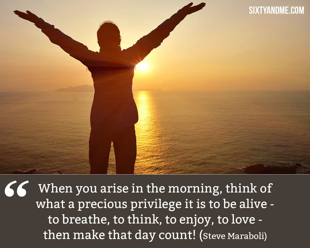 """""""When you arise in the morning, think of what a precious privilege it is to be alive—to breathe, to think, to enjoy, to love—then make that day count!"""" - Steve Maraboli"""