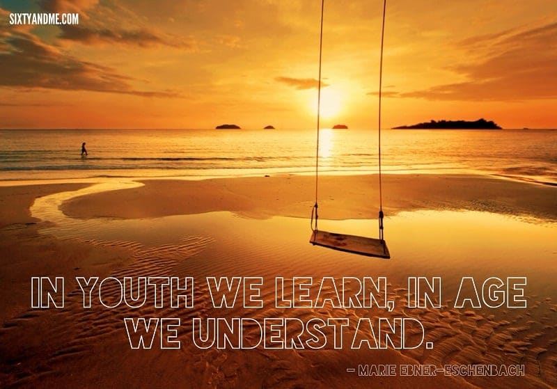 Marie Ebner-Eschenbach - In youth we learn, in age we understand