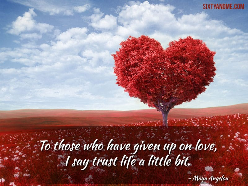 Finding Love After 60 - Maya Angelou - To those who have given up on love, I say trust life a little bit