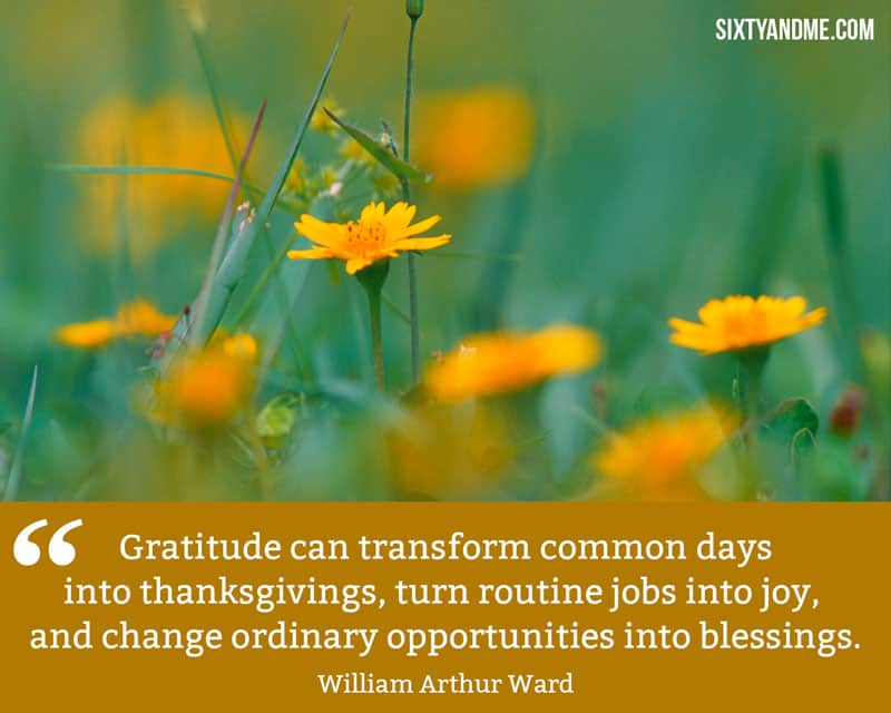 William Arthur Ward - Gratitude can transform common days into thanksgivings
