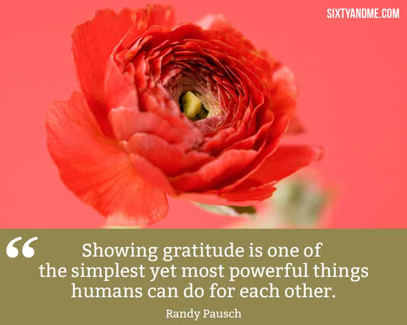Being Grateful Quote - Randy Rausch - Showing gratitude is one of the most powerful things that humans can do for each other.