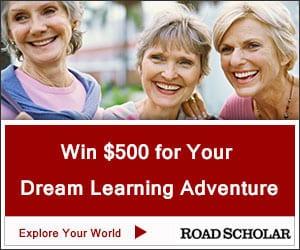 Road-Scholar-300x250_Explore-1-