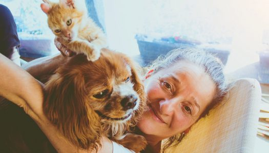 What's the Purrfect Pet for Boomers? Are You a Cat Person or a Dog Person?
