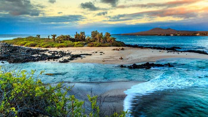 Adventure Cruises - Galapagos