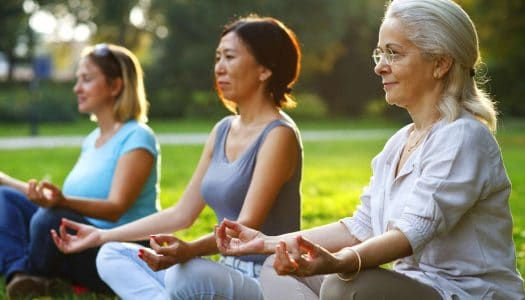 Yoga For Seniors Chair Yoga Gentle Yoga For Older Adults