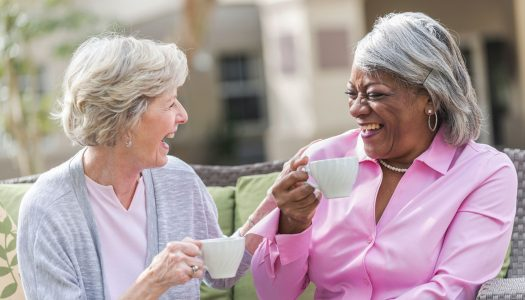 Shared Housing for Seniors – Solutions for Income and Companionship