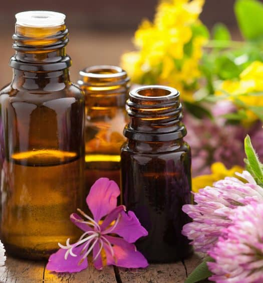 healthy aging herbal remedies