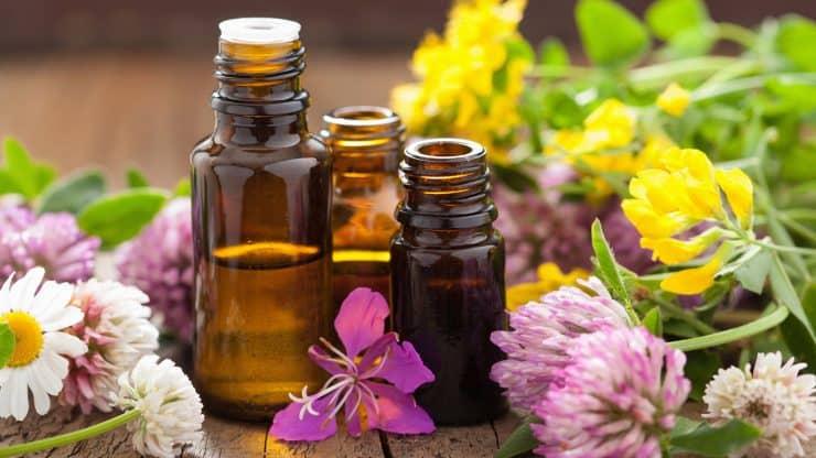healthy aging herbal remedies
