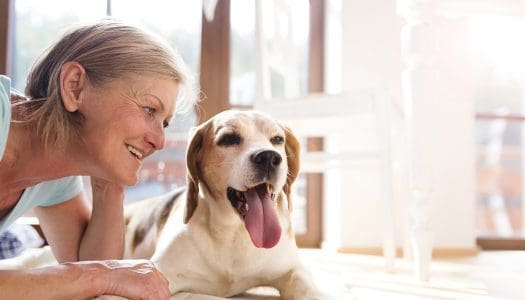 What Can Our Dogs Teach Us About Positive Aging?