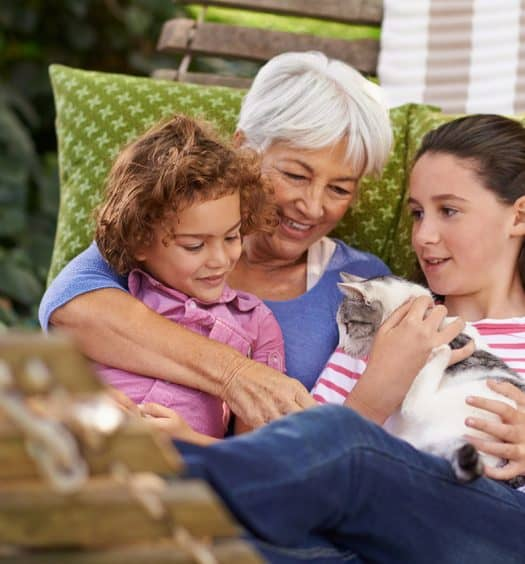 pet loss grandchildren