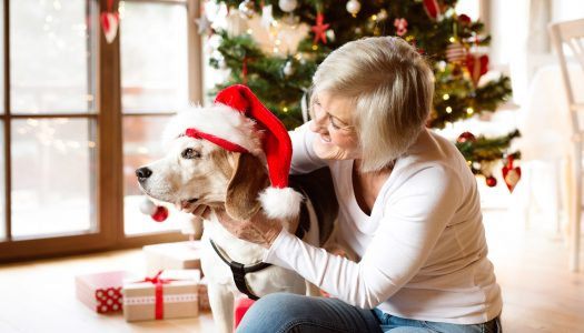 Divorced After 50? How to Survive the Crazy Holiday Season