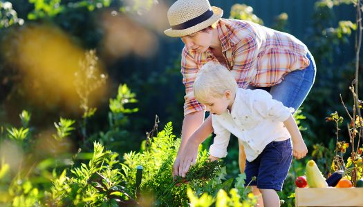 5 Tips for Learning How to Be a Grandmother