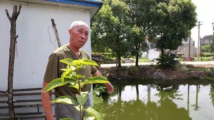 Hero 80-Year-Old Man
