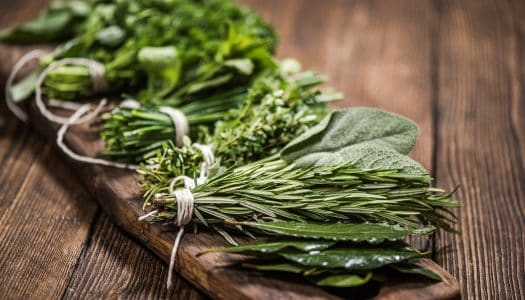 Want to Reduce Stress in Your 60s? Here's How to Beat Anxiety with Herbal Medicines
