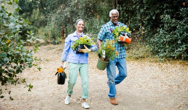 senior couple caring for garden