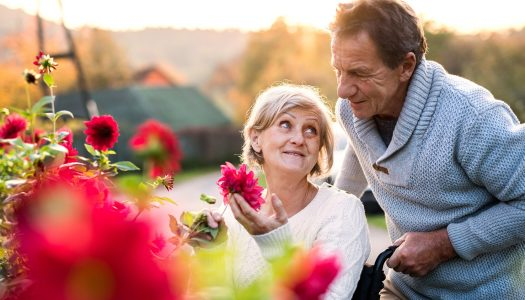 The 6 Most Known Types of Dementia Any Older Adult Should Learn About
