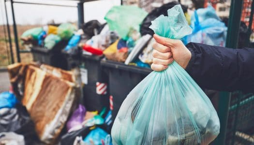 12 Simple Habits of Waste Reduction Any Mature Woman Can Follow