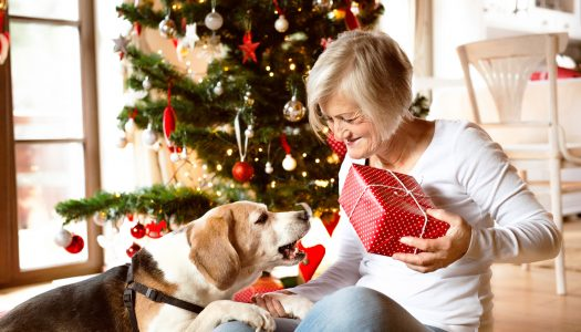 What Makes a Perfect Gift for a Caregiver: 4 Ideas You Can Consider This Christmas