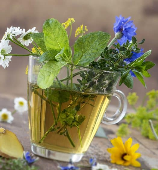 Rejuvenate Your Skin with Herbal Teas Beauty Boosting Benefits for Mature Women