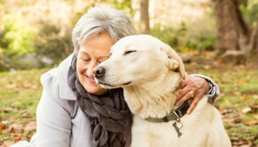 What Are the Health Benefits of Owning a Pet Over 60?