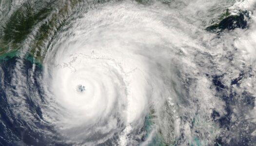 Pandemics, Hurricanes… Oh My!