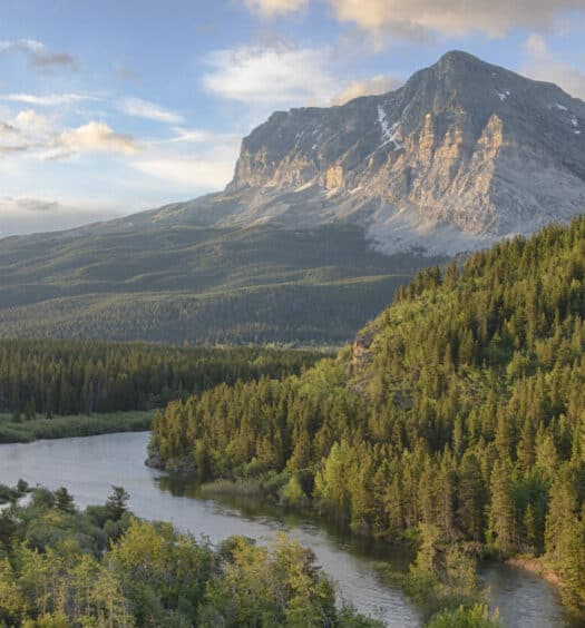 Montana Aging Resource Guide