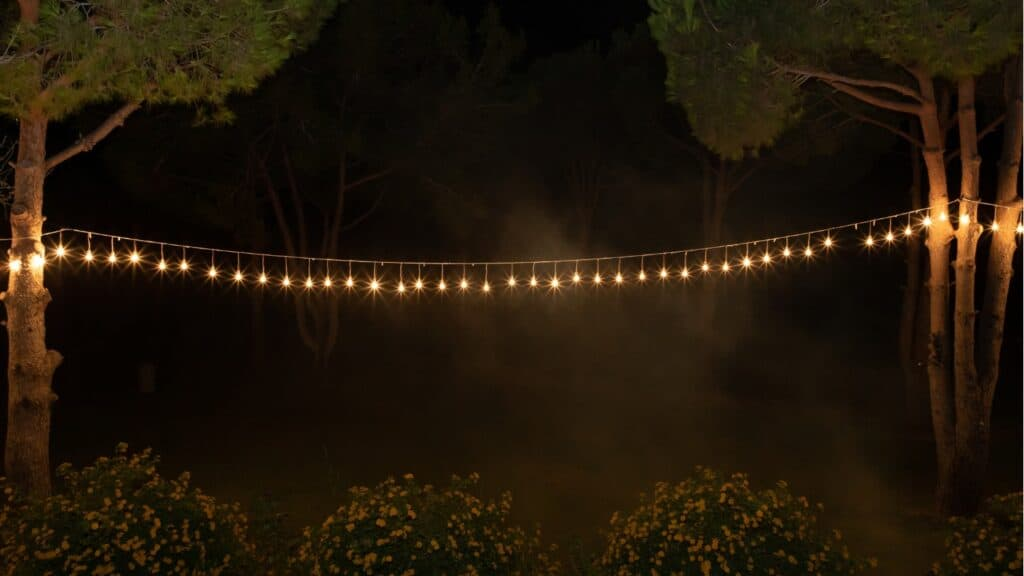 string lights in the garden