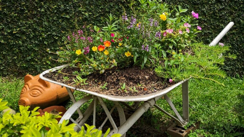 decorate your garden with wheelbarrow planter