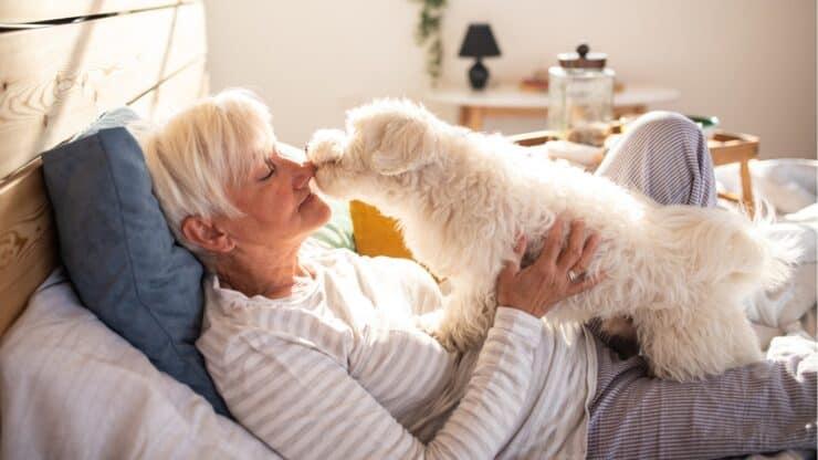pandemic pet behavior