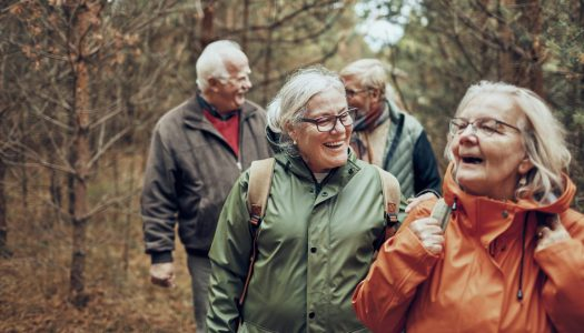 Physical Activity Guide For Seniors