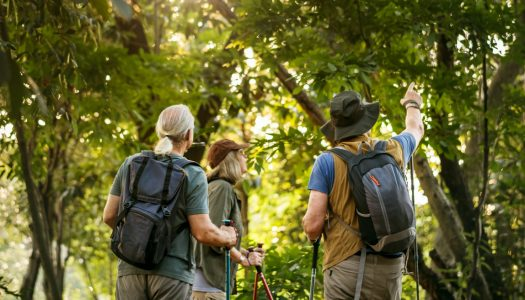 How Your Love of Nature Can Be a Great Conversation Starter