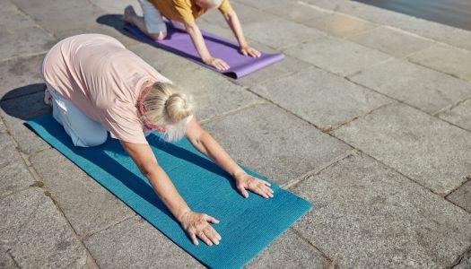 The 4 Essential Restorative Yoga Poses for Pet Grief